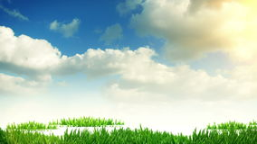 Narastający drzewo i trawa, 3d animacja royalty ilustracja