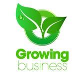 Narastający liścia logo Zdjęcie Royalty Free