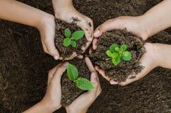 Narastający pojęcia eco grupy ręki dzieci zasadza wpólnie Obrazy Royalty Free