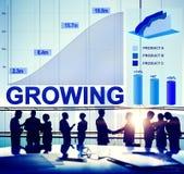Narastający Wzrostowy sukcesu Biznesowego celu celu pojęcie Obrazy Royalty Free