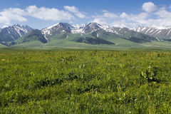 Narat mountain prairie Stock Images