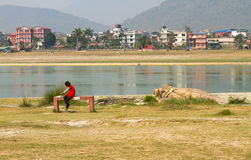 Narayani River Bank,Chitwan,Nepal Royalty Free Stock Photography