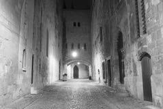 Narbona (Francia) Foto de archivo libre de regalías