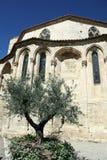 Narbonne basilika Arkivfoto
