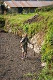 NARCHYANG, NEPAL 26 DE MARÇO: Povos 26 dos Himalayas, 2015 em Narchyan Imagem de Stock