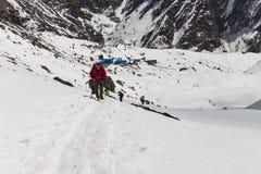 NARCHYANG, NEPAL-MARCH 23: Grupa turyści 23, 2015 w Narch Zdjęcie Stock