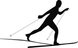 Narciarka biega nartę Zdjęcie Stock