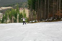 Narciarka jest narciarstwa puszkiem skłon w drewnach Zdjęcie Stock