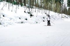Narciarka jest narciarstwa puszkiem skłon w drewnach Fotografia Royalty Free