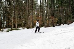 Narciarka jest narciarstwa puszkiem skłon w drewnach Obrazy Royalty Free