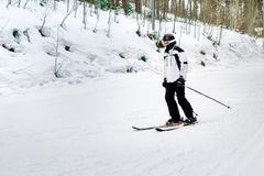 Narciarka jest narciarstwa puszkiem skłon w drewnach Obraz Stock