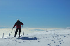 narciarka jurassic Zdjęcia Stock