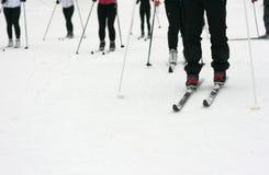 narciarka prowincji Zdjęcia Royalty Free