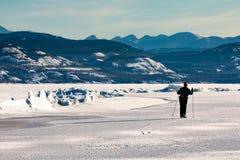 Narciarka przy ciśnieniową granią na Jeziornym Laberge YT Kanada zdjęcie royalty free