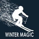 Narciarki zimy magia Zdjęcie Royalty Free