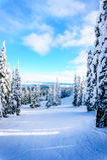 Narciarscy skłony i zima krajobraz z śniegiem Zakrywali drzewa na Narciarskich wzgórzach blisko wioski słońce szczyty obraz royalty free