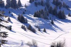 narciarscy skłony Fotografia Stock