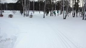 Narciarska rasa na śladzie w zimie footage Odgórny widok konkurowanie fachowe narciarki jedzie na śladzie w kolorowych kostiumach zbiory wideo