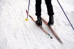 Narciarski skłon, narciarka w zima lasu tle obraz stock