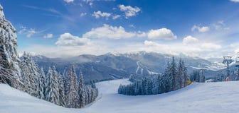 Narciarski skłon wśród świerkowego lasu na ośrodku narciarskim w Carpathians obraz royalty free