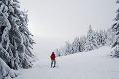 narciarstwo fotografia stock
