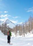 narciarstwo Zdjęcie Royalty Free