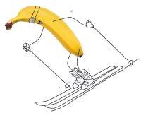 Narciarstwo banan royalty ilustracja