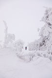 Narciarstwo nad Arktyczny okrąg Zdjęcie Royalty Free