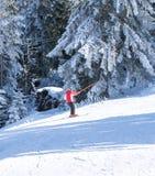 Narciarstwo, narta, narciarka - narciarka mężczyzna na skłonie w górach Zdjęcie Royalty Free