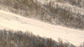 Narciarstwo puszka śnieżna góra zbiory wideo