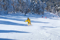 Narciarstwo zimy kobiety mężczyzna narciarstwo zjazdowy, Obraz Royalty Free