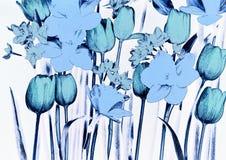 Narcisi e tulipani Fotografia Stock