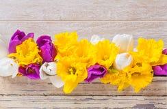 Narcisi, tulipani, legno Fotografie Stock Libere da Diritti