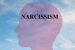 Narcisismo - conceito mental ilustração royalty free