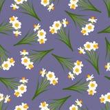 Narciso amarelo branco - Narcissus Seamless no fundo roxo Ilustração do vetor ilustração royalty free