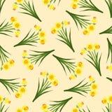Narciso amarelo amarelo - Narcissus Seamless no fundo bege do marfim Ilustração do vetor ilustração royalty free