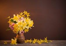 Narciso amarelo no fundo marrom Fotografia de Stock