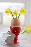Narciso amarelo no shell de ovo Imagem de Stock Royalty Free
