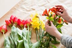 Narciso del tulipano di alstroemeria del fiore del lavoro del fiorista Fotografia Stock