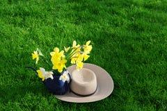 Narciso e cappello immagini stock