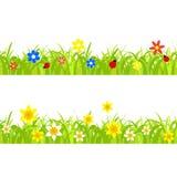 Narcisos amarelos na grama Fotos de Stock Royalty Free