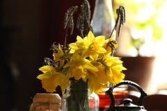 Narcisos amarelos no interior retro fotografia de stock