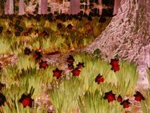 Narcisos amarelos psicadélicos Foto de Stock Royalty Free