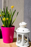 Narcisos amarillos y lámpara blanca, aún vida Imagen de archivo