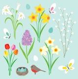 Narcisos, borboletas e ninho do pisco de peito vermelho ilustração royalty free