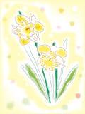 Narcisos de la acuarela Imagen de archivo libre de regalías