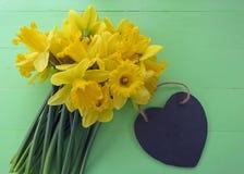 Narcisos de la primavera Fotografía de archivo