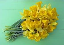 Narcisos de la primavera Fotos de archivo libres de regalías