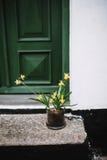 Narcisos delante de una casa en Dinamarca Foto de archivo libre de regalías