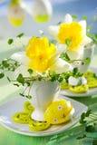 Narcisos en hueveras Imagen de archivo libre de regalías